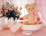 Teddy Bear In Washbowl & Flowers Cute Kids Room Wall Decor Art Print Poster (16x20)