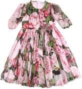 Dolce & Gabbana Roses Print Silk Chiffon Dress