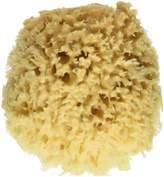 "Baby Buddy Baby Buddy's Natural Baby Bath Sponge 2 Pack 4-5"" Ultra Soft Premium Sea Wool Sponge Soft on Baby's Tender Skin, Biodegradable, Hypoallergenic, Absorbent Natural Sea Sponge"