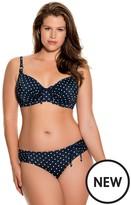 Dorina Curves Palm Springs Bikini Brief