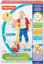 Fisher-Price Puppy's Smart Stages Push Car