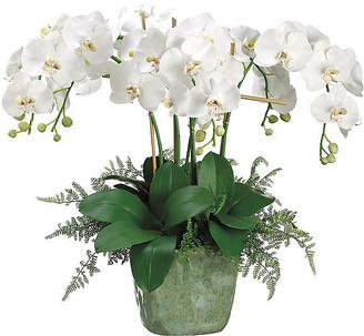 "One Kings Lane 28"" Phalaenopsis Orchid Arrangement - Faux - arrangement, white/green; vessel, green"