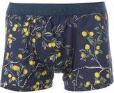 Dolce & Gabbana lemon tree print boxers