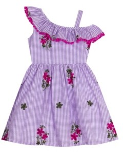 Rare Editions Toddler Girls Embroidered Gingham Dress