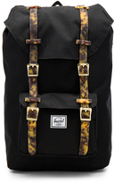 Herschel Mid Volume Little America