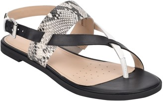 evolve Avah Toe Loop Sandal