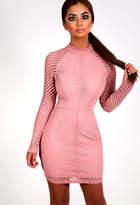 Pink Boutique Oriana Blush Pink Mesh Mini Dress