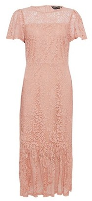Dorothy Perkins Womens Pink Lace Peplum Pencil Midi Dress, Pink