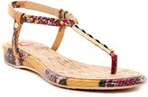 Elaine Turner Designs Demi Sandal