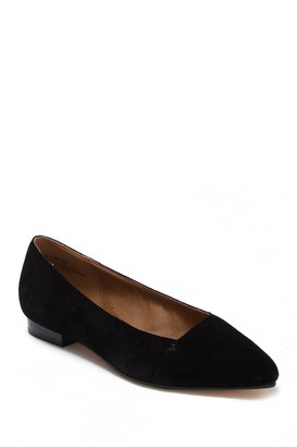 Susina Leesa Suede Pointed Toe Flat