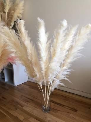 "PAMPAS GRASS Extra Fluffy 3 pcs White 44"" Large Dried Cortaderia Selloana Rustic Wedding Decor Boho Home Decor Bohemian Plant Valentine Gift"