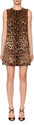 Dolce & Gabbana Sleeveless Leopard Print Shift Dress