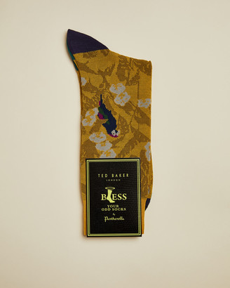 Ted Baker PERRSOC Parrot print cotton socks