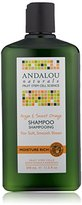 Andalou Naturals Moisture Rich Shampoo, Argan and Sweet Orange, 11.5 Ounce
