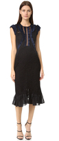 Rebecca Taylor Sleeveless Vien Lace Dress