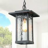 Winterton 1-Light Outdoor Hanging Lantern Gracie Oaks