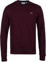 Lacoste Maroon Crew Neck Sweater