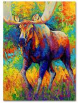 Trademark Fine Art Marion Rose Bull Moose Giclee Canvas Art