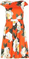 Dorothy Perkins Orange Floral Print Fit & Flare Dress