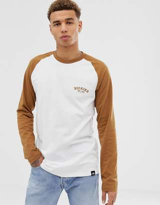 Dickies Baseball raglan long sleeve t-shirt with brown sleeve