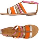 Geox Sandals - Item 11191979