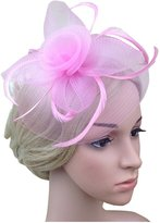 Jypc Lady Sinamay Flower Hat Feather Hat Pillbox Hat for Tea Party