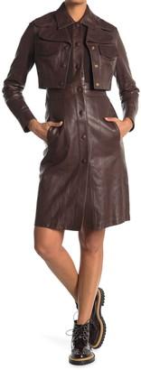 Burberry Liskeard Leather Jacket Dress