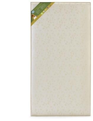 Sealy Soybean Plush Foam Core