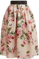Dolce & Gabbana Rose and butterfly-print silk-organza skirt