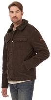 Mantaray Big And Tall Brown Harrington Jacket