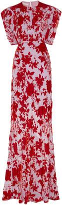 Philosophy di Lorenzo Serafini Floral-Print Devore Velvet Gown