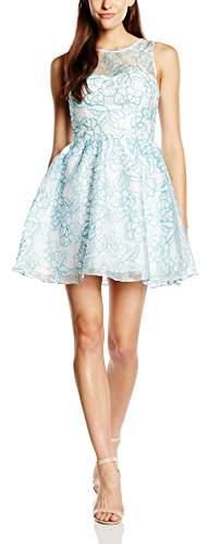 Logan Hailey Women's Organza Short Skater Floral Sleeveless Dress