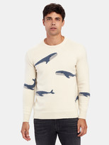Harden Whale Crewneck Cashmere Sweater