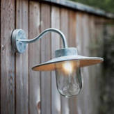 Garden Selections Galvanised Swan Neck Wall Light