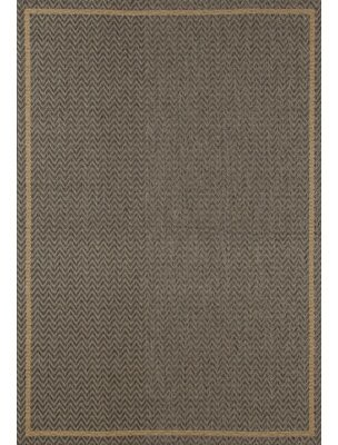 "Fleur De Lis Living Beaminster Gray Indoor/Outdoor Area Rug Rug Size: Rectangle 2'7"" x 4'1"""