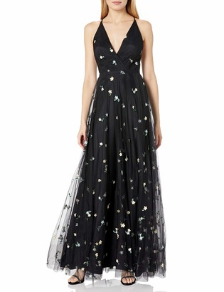 Jenny Yoo Women's Chelsea Convent Garden Floral Embroidered Tulle Gown