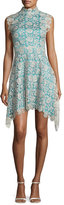 Catherine Deane Izzy Sleeveless Floral Lace Fit-and-Flare Dress, Silver/Blue