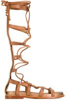 Ash tall 'Miracle' gladiator sandals