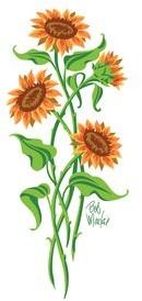 Bob Mackie Flatweave Green/Orange Rug