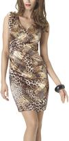 Shape Fx Leopard Mariah Dress