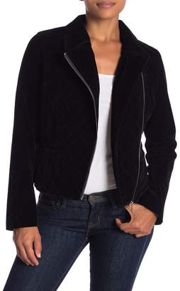 DOLCE CABO Velvet Moto Jacket