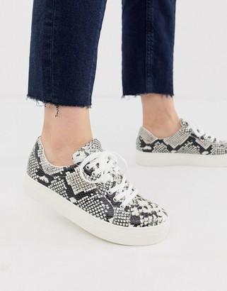 Aldo Lovireclya flatform lace up sneaker in snake