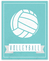 Sport Balls: Volleyball