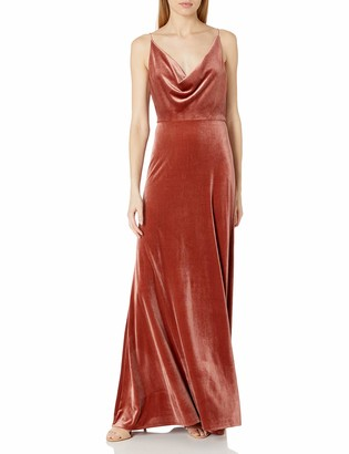 Jenny Yoo Women's Sullivan Velvet Cowl Neck Long Gown