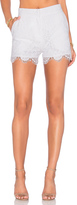 Lover Oasis Shorts