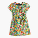 Girls' Liberty Art Fabrics Elodie Bea dress