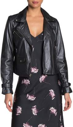 Paige Ashby Genuine Leather Jacket