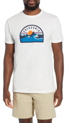 Patagonia Boardie Badge Organic Cotton T-Shirt