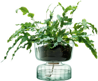 LSA International Canopy Self Watering Planter - 22cm