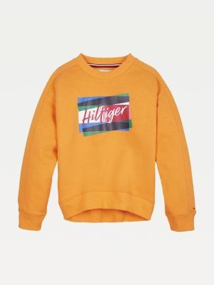 Tommy Hilfiger Signature Logo Crew Neck Sweatshirt